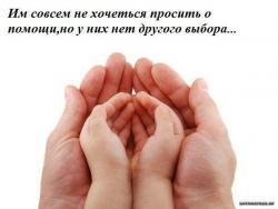 thumb_pre_1392734457__vtpytpnhtxw.jpg
