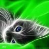 Заячья губа - последнее сообщение от Фан